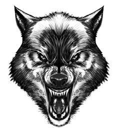 Wolf - biz20
