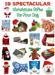 Don't forget your pooch when you're doing your holiday shopping! Check out all these great Christmas gifts for dogs, from toys to treats to pretty clothes & new places to sleep!
