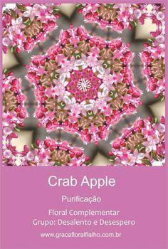 jogo Cards Mandala - Florais de Bach