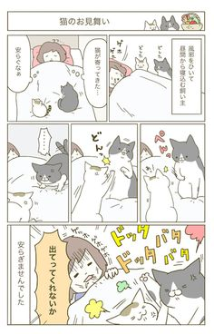 Animals And Pets, Cute Animals, Cat Entertainment, Cat Comics, Manga, Comic Strips, Neko, Fur Babies, Funny Cats