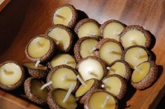 Floating beeswax candles in acorn hats! @Lisette Bouchard