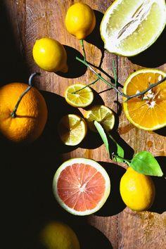 Citrus Cocktails | Not Without Salt | Bloglovin'