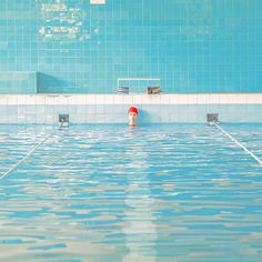 http://www.fubiz.net/2016/10/28/swimming-trinity-series-by-maria-svarbova/?utm_source=feedly