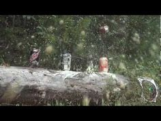 Exploding targets in slow motion shot by gun