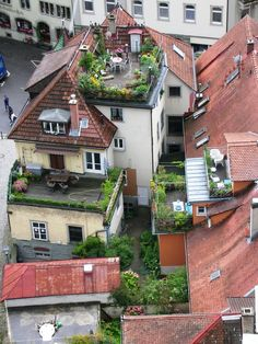 Natural Rooftop Garden Ideas for Urban House. In densely populated urban areas with limited land use, most houses certainly have rooftop garden, flat roofs, or small terraces. It will be awesome t. Outdoor Spaces, Outdoor Living, Rooftop Terrace, Terrace Garden, Green Terrace, Terrace Decor, Rooftop Design, Porch Garden, Herb Garden