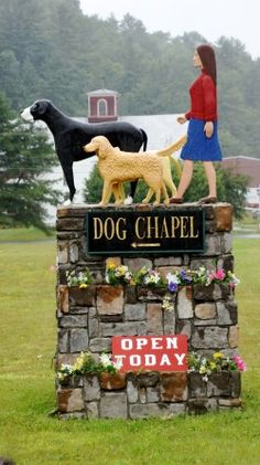 Stephen Huneck created Dog Mountain in St. Johnsbury, VT to honor pets that have passed and give us a place to enjoy our time with pets that are still with us. It's a fantastic dog friendly place to spend the day.