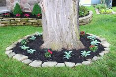 15 Beautiful Ideas For Decorating The Landscape Around The Trees