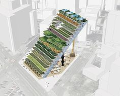 Vertical farming, also known as urban agriculture, gives hope for feeding our ever-growing population. Get ideas for starting your vertical farm. Architecture Company, Green Architecture, Landscape Architecture, Landscape Design, Architecture Design, Urban Agriculture, Urban Farming, Urban Gardening, Indoor Gardening