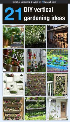 21 DIY vertical gardening ideas Idea Box by Sensible Gardening and Living Vertikale Gartenarbeit Small Gardens, Outdoor Gardens, Vertical Gardens, Diy Vertical Garden, Large Backyard, Modern Backyard, Diy Garden Projects, My Secret Garden, Diy Patio