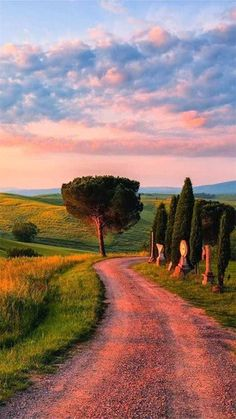 Ideas Landscape Pictures Tuscany Italy For 2019 Oh The Places You'll Go, Places To Visit, Beautiful World, Beautiful Places, Beautiful Sunset, Landscape Photography, Nature Photography, Tuscany Italy, Sorrento Italy