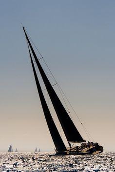 Voiles de St Tropez 2012-8975.jpg By Patrick Le Galloudec *