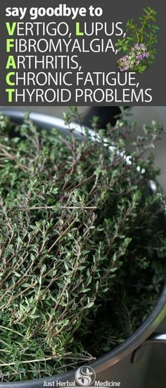 Handful of Thyme, fresh or dried 1 cup water Honey -optional Boil water, pour over Thyme, let sit few minutes Strain Add honey to sweeten Drink this everyday