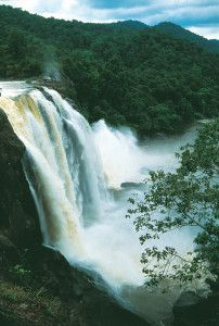 Athirappally - To enjoy life in a forest area and enjoy the magnificence of a water fall