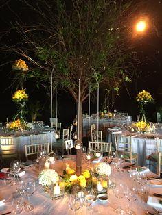 Stylish Italian Themed Wedding With Real Trees And Lemons
