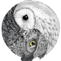 love the owl ying-yang....would keep barn owl but add in a different one to…