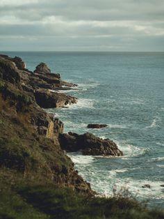 Wild Walks on Rinsey Head, Cornwall   The Cornish Life