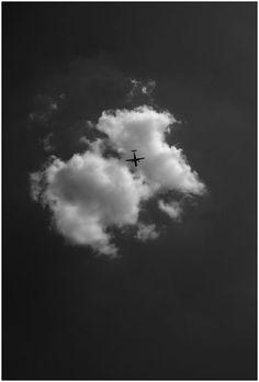 "©yama-bato,""returning home"", 2012"