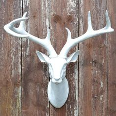 Deer antlers head / stag head mounted wall hanging - Six Things Stag Deer, Deer Antlers, White Deer Heads, Faux Deer Head, Decorative Items, Wall Mount, Unique Jewelry, Lady, Truck