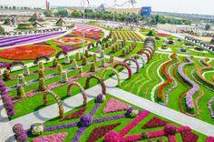Мир Ирины Лем: 8-е чудо света - уникальный цветочный сад в Дубае. Вы такого еще не видели