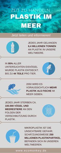 Plastik im Meer und Folgen für die Umwelt Infografik - ecomonkey