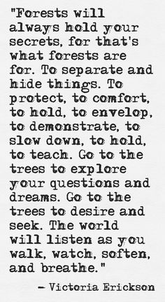 The world will listen as you walk ~ watch ~ soften ~ and breathe ~❤~ Victoria Erickson The Words, Cool Words, Victoria Erickson, Quotes To Live By, Me Quotes, Beauty Quotes, Wisdom Quotes, Mountain Quotes, Beautiful Words