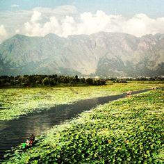 #Kashmir #India #Everest