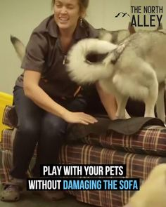 Girls Best Friend, Best Friends, Canadian English, Cute Dogs, Cute Babies, Clean Sofa, Metal Birds, Steam Cleaning, Sofa Upholstery