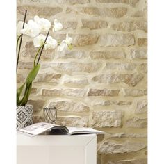 Siding Stone Wallpaper With Exceptional Brick Wallpaper Leroy Merlin Wallpaper Idees And With Source by Interior Walls, Interior And Exterior, Fake Stone Wall, Wall Cladding Tiles, Casa Loft, Stone Siding, Stone Wallpaper, Cottage Living Rooms, Fireplace Design