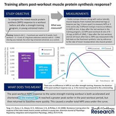 Hypertrophy results from an imbalance between muscle protein synthesis (MPS) and muscle protein breakdown in the hours following a strength training workout and/or protein consumption.  Many studies have been carried out exploring the effects of different training variables (eccentric vs. concentric, high vs. low volume, etc.) on post-workout MPS. However, as this study shows, training status can also affect the shape of the post-workout elevation in MPS.  In untrained body parts, MPS…