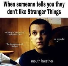 When Someone Tells You They Don't Like Stranger Things I'm Going to Send You to the Upside Down No Eggos for the Demogorgon Will Find You Mouth Breather No Eggos for U Stranger Things Quote, Stranger Things Have Happened, Stranger Things Aesthetic, Stranger Things Netflix, Stranger Things Season One, Mouth Breather, Saints Memes, Stranger Danger, Dead To Me