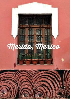 Solo Travel Destination: Merida, Mexico http://solotravelerblog.com/solo-travel-destination-merida-mexico/