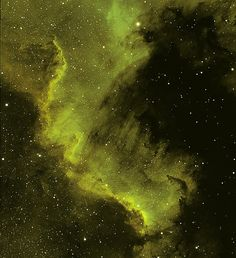 peter NGC 7000 (part) North America nebula - 'Gulf of Mexico'