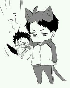 Ushijima and a very irritated Iwaizumi!
