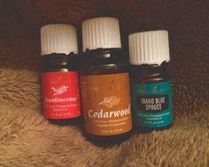 Warm and Cozy Blend | Frankincense + Cedarwood + Idaho blue Spruce