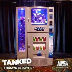 Tanked Cool Fish Tanks, Awesome Tanks, Tanked Aquariums, Fish Aquariums, Aquarium Fish Tank, Aquarium Ideas, Goldfish Tank, Reptile Habitat, Glass Fire Pit