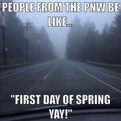 Spring in the Pacific Northwest #pnw #funny