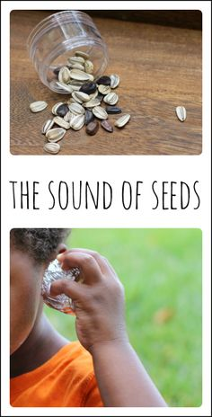 seed sound matching game 1