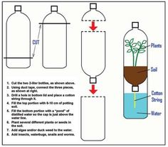 Illustration shows cutting the top of one bottle and bottom of the other, taping them together to form a bottom reservoir into which a string dips to provide water to the soil in the upper bottle.