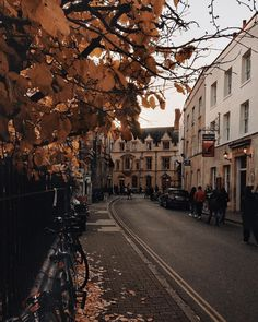Enjoying the last of the autumn colours while wishing they would stay around a little bit longer 🍂✨ I'm dedicating this post to finding out… Autumn Aesthetic, City Aesthetic, Travel Aesthetic, Autumn Photography, Travel Photography, Nice Photography, Camille Desmoulins, Photo Trop Belle, Beautiful Places