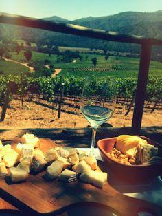 Cono Sur Vineyards & Winery, Chile Chilean Wine, Se7en, Wineries, Banquet, White Wine, Vineyard, Alcoholic Drinks, Tours, Travel