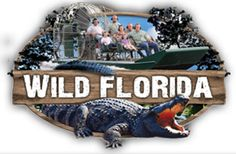 Orlando Airboat Rides & Airboat Tours At Wild Florida Airboats