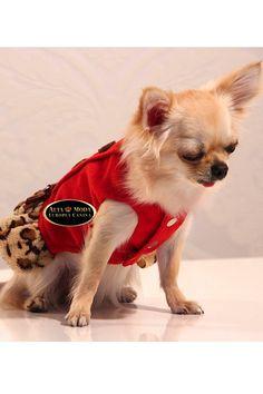 Otoño/Invierno (4) - Alta Moda Europea Canina
