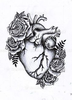 Anatomical Heart Tattoo ❥❥❥ https://tattoosk.com/anatomical-heart-tattoo-2#261