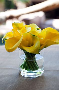 I love for any one type of flower to be tied together and paired with a clear vase. For a modern centerpiece, arrange yellow calla lilies in a small vase. Modern Centerpieces, Wedding Centerpieces, Wedding Bouquets, Wedding Flowers, Calla Lily Centerpieces, Centrepieces, Arrangements Ikebana, White Flower Arrangements, White Flowers