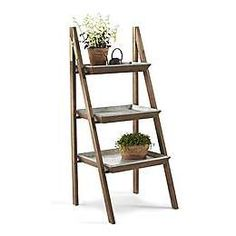 Ladder plant stand