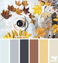 inspired autumn