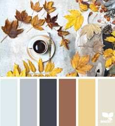 { inspired autumn } image via: @clangart