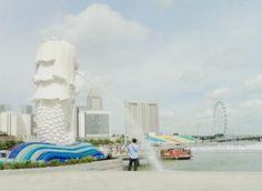 Singapore vốn là một Quốc gia có nền kinh tế phát triển nhất khu vực Đông Nam Á, và kéo theo đó là các nghành khác cũng phát triển không kém.