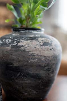 I have a great treat for you today because today Diy Painted Vases, Spray Paint Vases, Black Spray Paint, Flower Vases, Flower Pots, Old Vases, Large Vases, Black Vase, Diy Painting