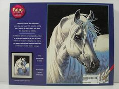 Dimensions White Stallion Paint By Number #  DMS91224  This is their eBay page, but I found it on www.pchobbies.com and they have TONS of cool stuff on there.  Crafts, R/C Hobbies, Science stuff, Trains, etc...   LOVE this store!   @Lindsay Artinger